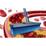 Как вывести токсины из крови?