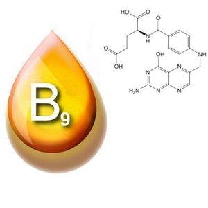 B9 (фолиевая кислота) - важнейший витамин для зачатия ребенка