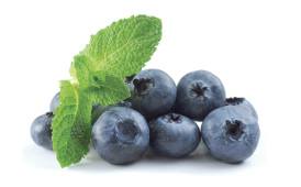 Черника в витаминах Вижион
