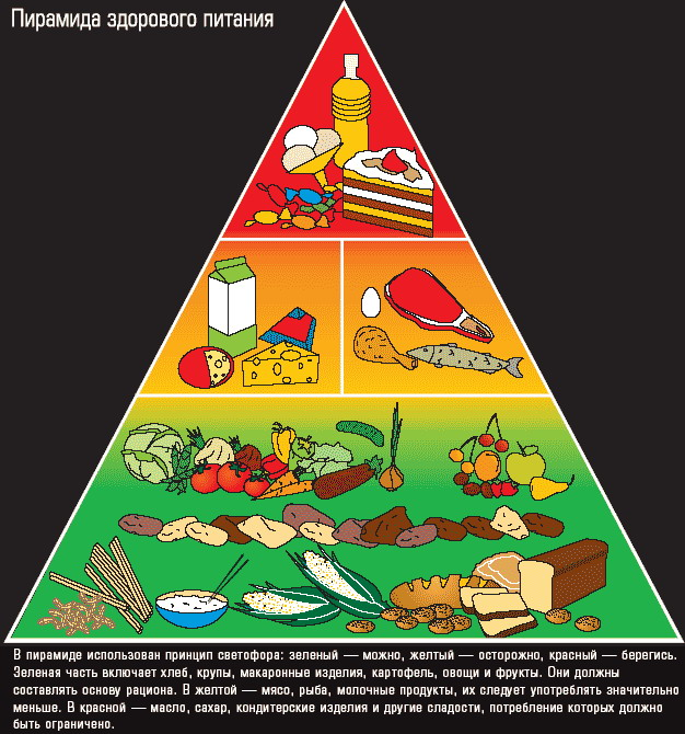 Пирамида питания пищевая пирамида картинки