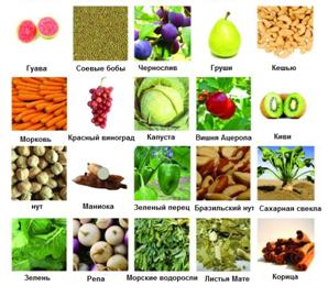 Пребиотики в продуктах питания