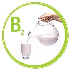 Витамин b2 содержится в молоке