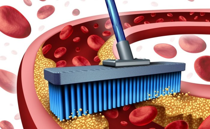 Чистка крови от токсинов